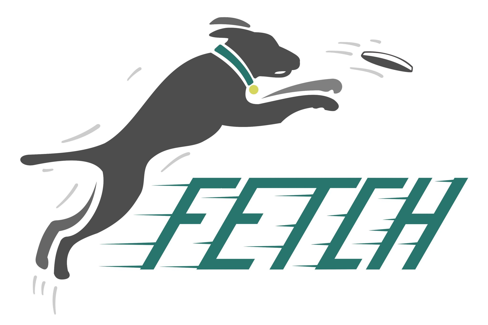 The Fetch Project